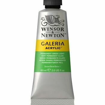 Winsor & Newton Galeria Acrylic Colour Paint 60ml - Permanent Green Light