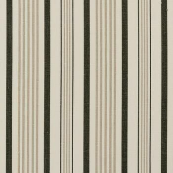 Clarke & Clarke - Clarisse Fabrics - Sable Charcoal