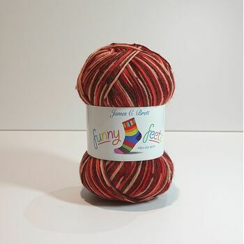 Funny Feetz 4 Ply Sock Yarn: FZ01 (100g)
