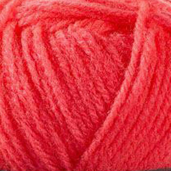 Barisienne - Rose Fluo - 29643 (50g)